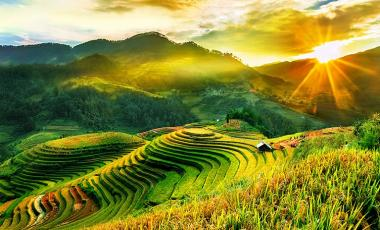 Image result for ngọc chiến mù cang chải